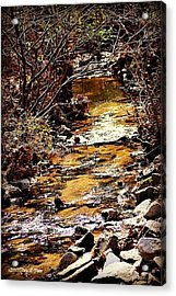 Acrylic Print featuring the photograph Sparkling Creek by Tara Potts