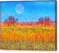 Acrylic Print featuring the digital art Moonlight Over Fields Of Gold - Boulder County Colorado by Joel Bruce Wallach
