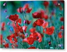 Sparkling Red Acrylic Print