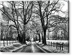 Sparks Lane During Winter Acrylic Print