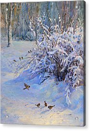 Sparrow On Snow Acrylic Print
