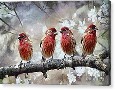Acrylic Print featuring the painting Sparrows by Georgi Dimitrov