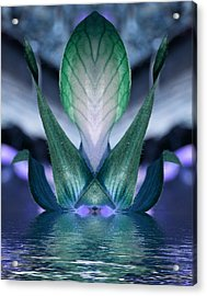 Acrylic Print featuring the photograph Spearit Rising by WB Johnston