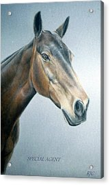 Acrylic Print featuring the painting Special Agent by Rosemary Colyer