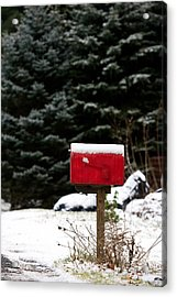 Special Delivery Acrylic Print