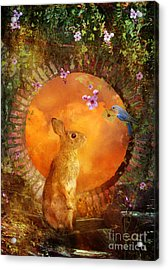 Special Delivery Acrylic Print by Aimee Stewart