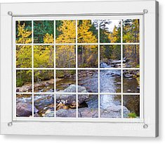 Special Place In The Woods Large White Picture Window View Acrylic Print