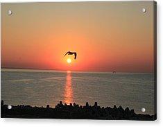 Special Sunrise Acrylic Print by Gavenea Gheorghe Sorin