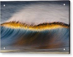 Acrylic Print featuring the photograph Speckled Crest Mg_7952 by David Orias