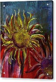 Spent Sunflower Acrylic Print by David Patterson