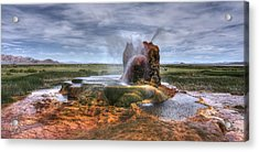 Acrylic Print featuring the photograph Spewing Minerals At Fly Geyser by Peter Thoeny