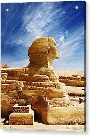 Sphinx Acrylic Print by Jelena Jovanovic