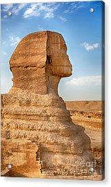 Sphinx Profile Acrylic Print by Jane Rix