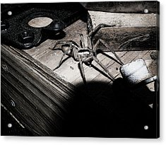 Acrylic Print featuring the digital art Spider B And W by Robert Rhoads