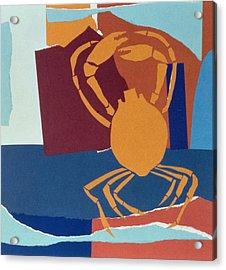 Spider Crab Acrylic Print by John Wallington
