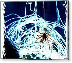 Acrylic Print featuring the digital art Spider by Daniel Janda