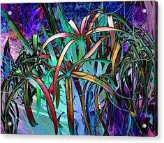 Spider Lilly Acrylic Print by Athala Carole Bruckner