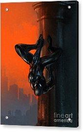 Spider-man Dusk Acrylic Print by Ashraf Ghori