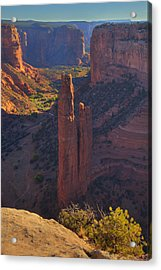 Acrylic Print featuring the photograph Spider Rock by Alan Vance Ley