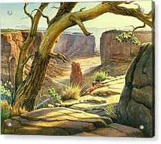 Spider Rock Overlook - Canyon Dechelly Acrylic Print by Paul Krapf