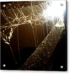 Acrylic Print featuring the photograph Spiderweb by Lucy D