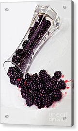 Spilt Blackberries Acrylic Print by Shirley Mangini
