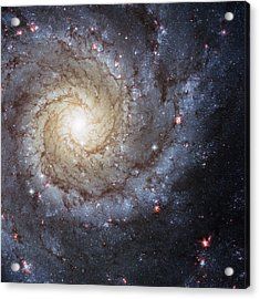 Spiral Galaxy M74 Acrylic Print