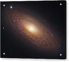 Spiral Galaxy Ngc 2841 Acrylic Print by Celestial Images