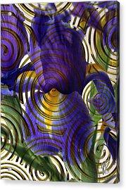 Spiral Iris Acrylic Print