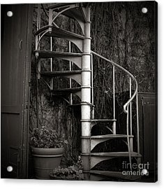 Spiral Staircase Acrylic Print by Charmian Vistaunet