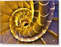 Acrylic Print featuring the photograph Spiral Staircase IIi by John  Bartosik