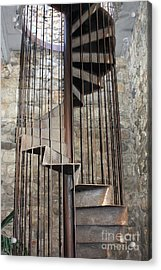 Spiral Staircase Acrylic Print by Sophie Vigneault