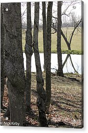 Acrylic Print featuring the photograph Spiral Trees by Nick Kirby