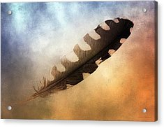 Spirit Feather Acrylic Print by Melissa Bittinger