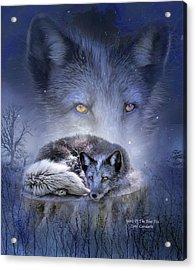Spirit Of The Blue Fox Acrylic Print by Carol Cavalaris