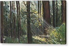 Spirit Woods Acrylic Print