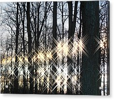 Spirits In The Woods Acrylic Print by Sharon Costa