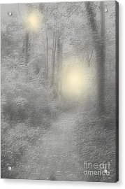 Spirits Of Avalon Acrylic Print by Roxy Riou
