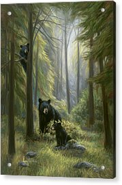 Spirits Of The Forest Acrylic Print by Lucie Bilodeau