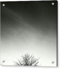 Spiritu Acrylic Print