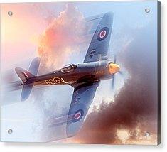 Hawker Sea Fury Acrylic Print by Steve Benefiel