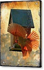 Splash And Dash - Digital Art Acrylic Print