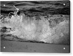 Splash Acrylic Print