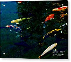 Splash Of Color Acrylic Print by Greg Patzer