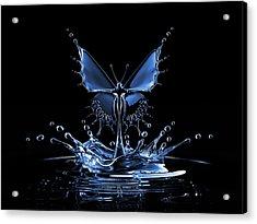 Splash Of Water Butterfly Acrylic Print by Blackjack3d