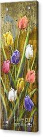 Splashy Tulips Acrylic Print by Vic  Mastis