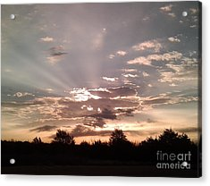 Splendid Rays Acrylic Print by Susan Williams