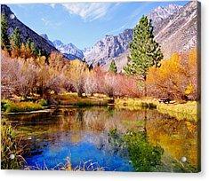Splendor Of Fall Acrylic Print