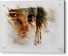 Split Vision Acrylic Print by Gun Legler