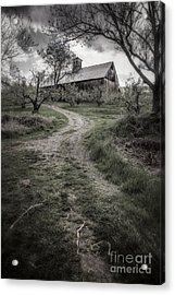 Spooky Apple Orchard Acrylic Print by Edward Fielding